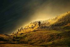 b_250_150_16777215_00_images_stories_fotoskupina_2015_Miljko_Lesjak.jpg